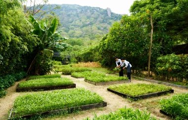 Organic Garden at Six Senses Ninh Van Bay_lowres.jpg